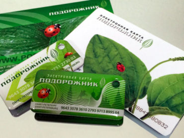 В Ленинградской области заработает «Подорожник»
