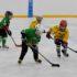 Будущее российского хоккея