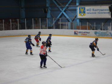 Первые успехи кудровской хоккейной команды