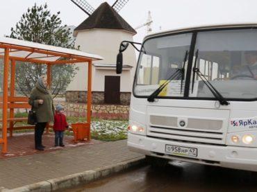 От Янино до Меги: в поселении может появиться муниципальный маршрут