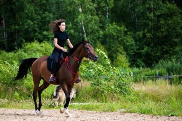 «Не я выбрала конный спорт, а он меня»