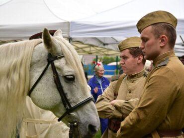 Во Всеволожском районе открыли памятник военным ветеринарам
