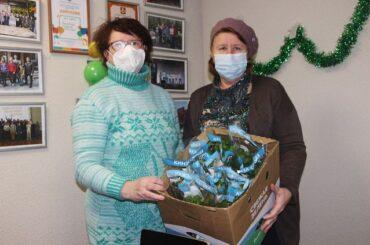 Союзу пенсионеров передали пакеты со свежей зеленью