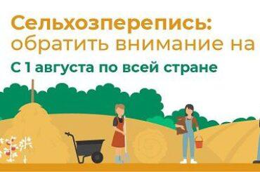 В Ленобласти завершается сельскохозяйственная перепись