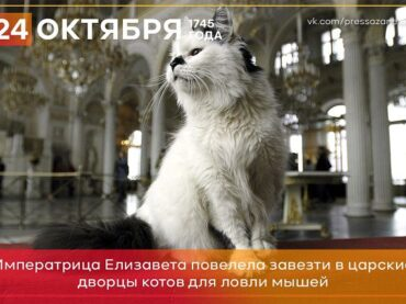 24 октября 1745 года императрица Елизавета повелела завезти в Петербург котов для ловли мышей